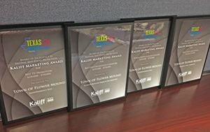 Photo of Four Award Plaques