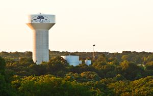 Flower Mound Water Tower surrounded by trees