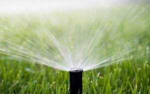 photo of a water sprinkler spitting water